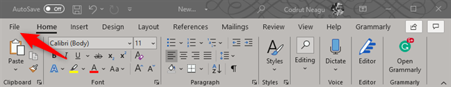 The File menu in Microsoft Word