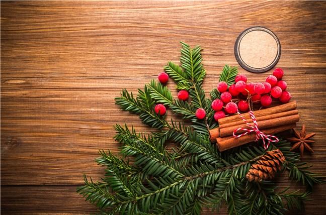 Christmas Holiday Ornament by Daria-Yakovleva