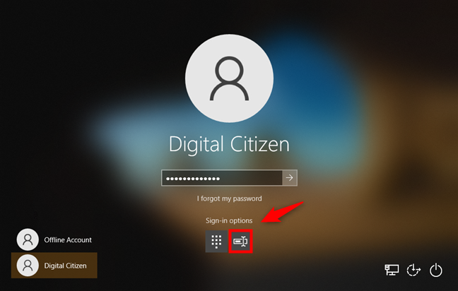 Windows 10 sign-in options: Choosing Password