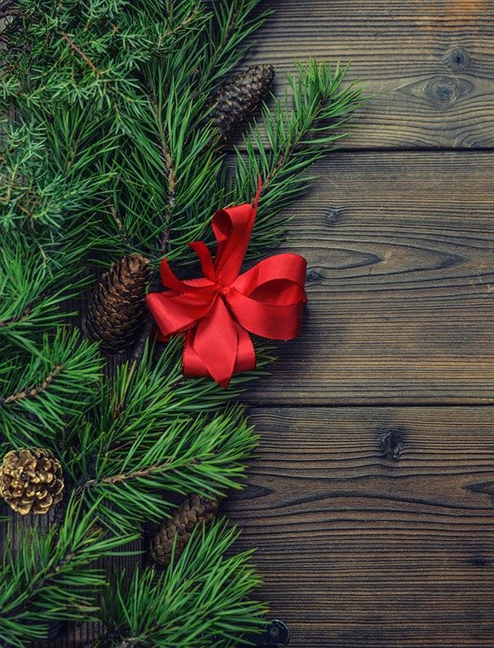 Pine twigs and cones, red bow, brown wood background