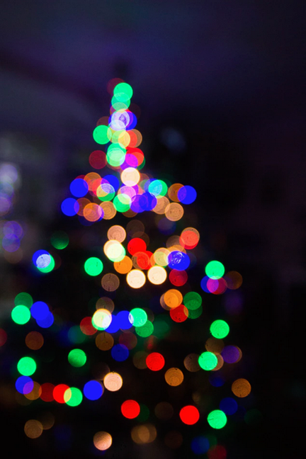 Bokeh effect on a Christmas tree with colored lights