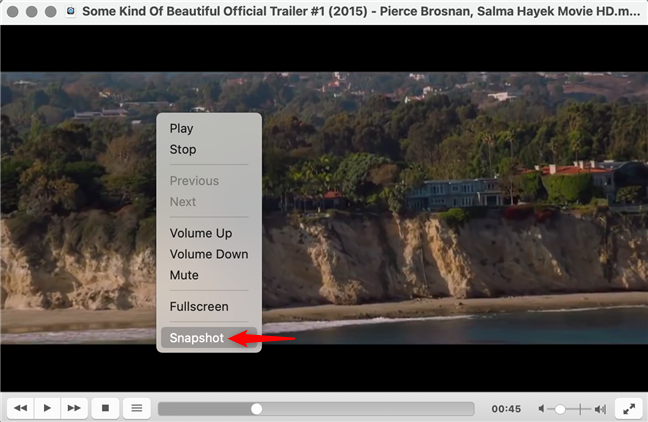 Screenshot in VLC from the right-click menu on macOS