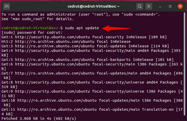 Running sudo apt update in Ubuntu Linux