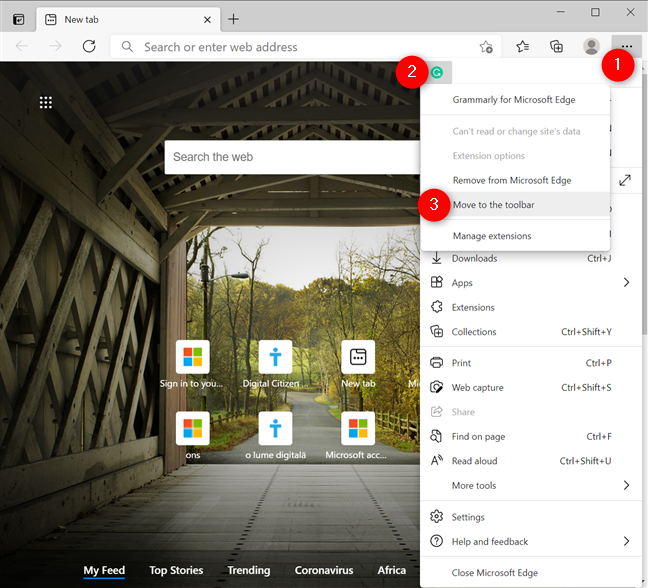 How to show an extension icon in the toolbar again