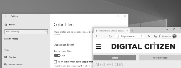 Windows 10 Color Filters