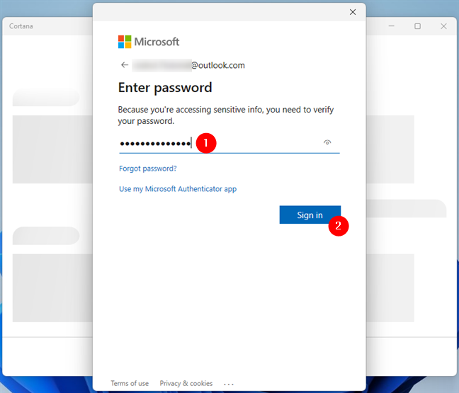 Enter the password of your Microsoft account