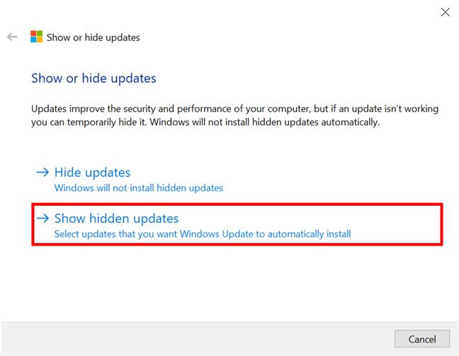 Show previously hidden updates in Windows 10