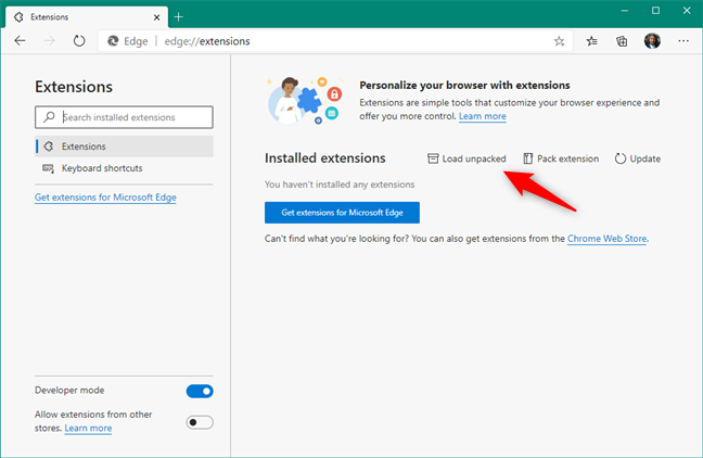 Load unpacked Ruffle Flash extension in Microsoft Edge