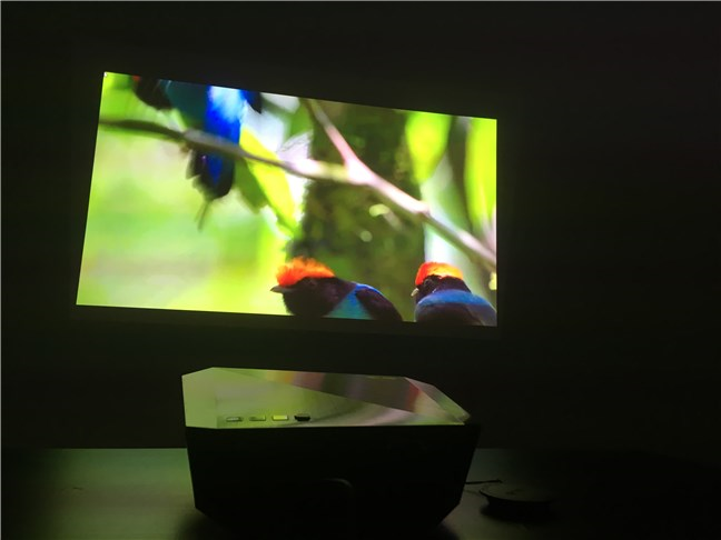 Watching a video on the ASUS F1 Full HD LED projector