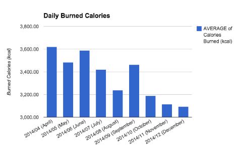 Christmas, habits, food, sleep, activity
