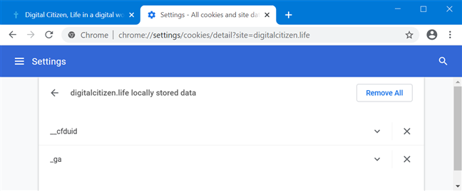 Access the cookies stored by a specific website