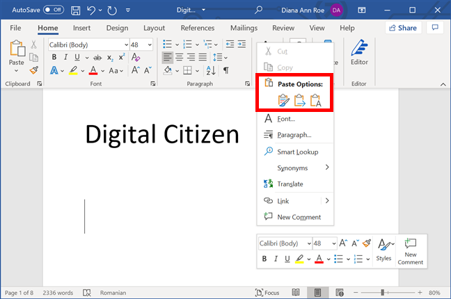 Paste Options in Microsoft Word