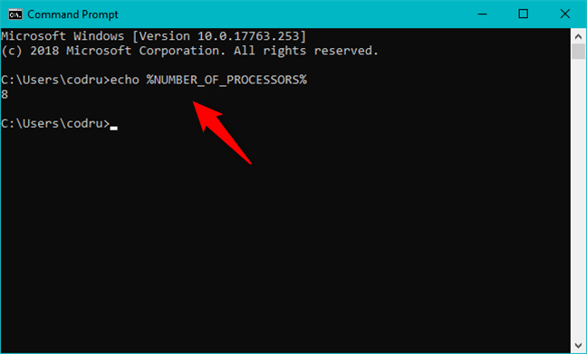 The Number of Processors environment variable