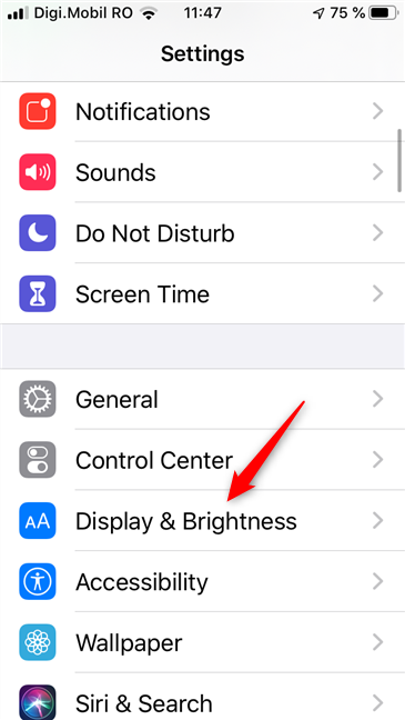 The Display & Brightness entry from the iPhone Settings