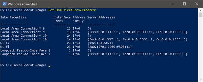 Ejecución de Get-DnsClientServerAddress para encontrar los servidores DNS en PowerShell