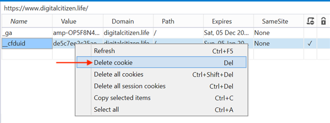 Delete cookie removes the selected cookie