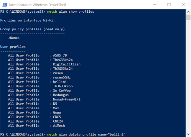 Delete a network profile from PowerShell