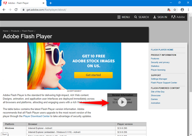 The now-visible Flash content shows the Version Information for Adobe Flash Player