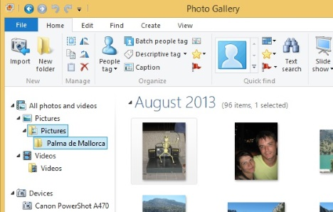 Windows, Photo Gallery, import, pictures, videos, digital camera