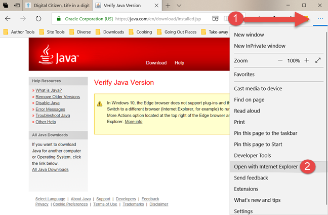 Java, web browsers, enable