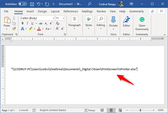 Copie y pegue el enlace del archivo en un documento