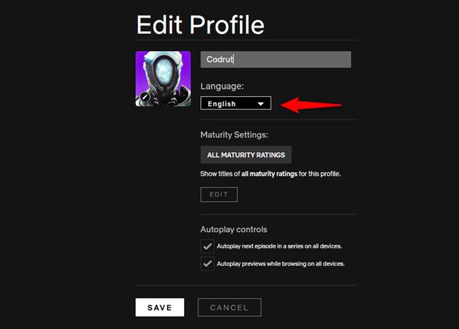 La configuración de idioma de un perfil de Netflix