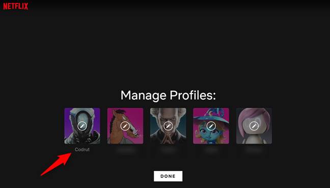 Selecting a profile from the Netflix account