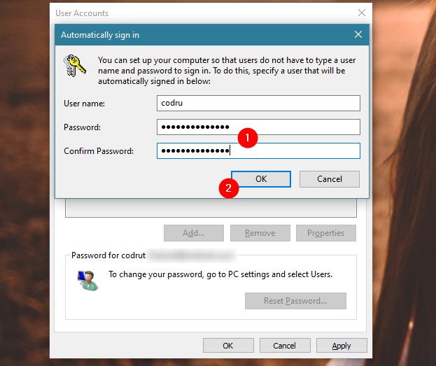 Ingresando la contraseña de la cuenta de usuario seleccionada