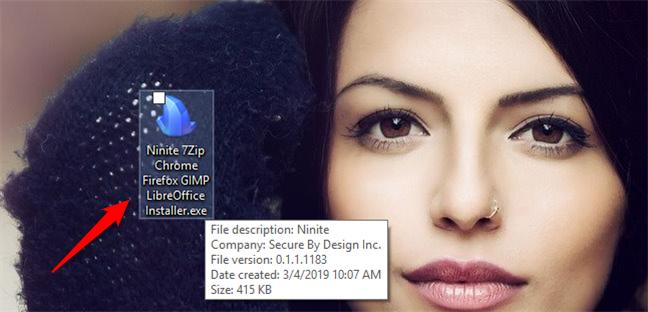 A custom Ninite installer file