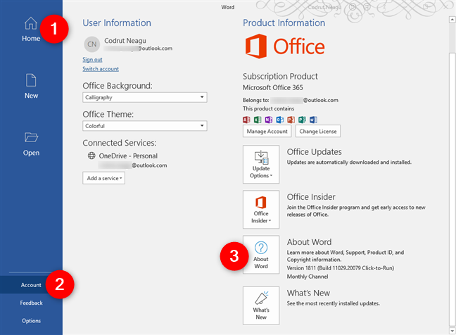 The About section from Office 365 Word