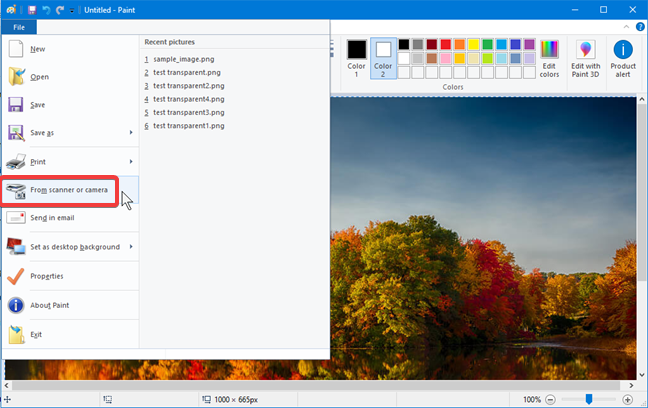 Import an image to Paint from a scanner or digital camera