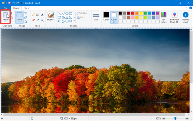 Paste an image in Paint