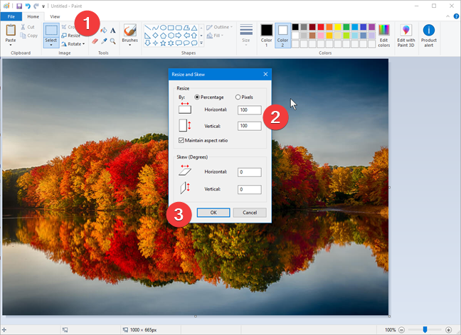 Resizing an image in Paint