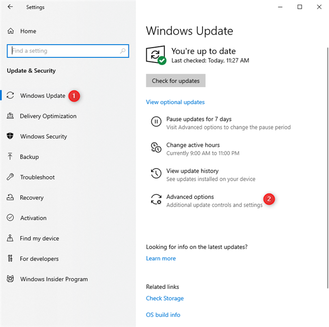 In Windows Update settings, go to Advanced options