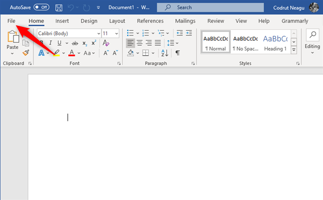 The File menu from Word