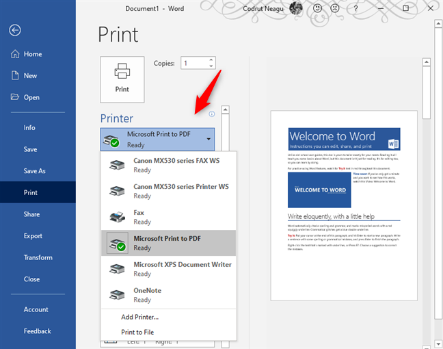 Select the Microsoft Print To PDF printer in Microsoft Word