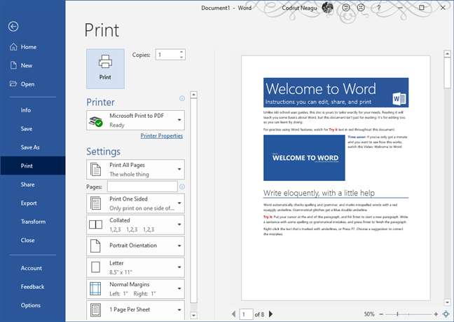 The Print dialog in Microsoft Word