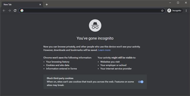 Google Chrome Incognito browsing mode