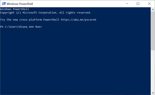 The PowerShell console opens