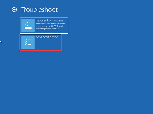 The Advanced options offered by the Windows 10 recovery drive