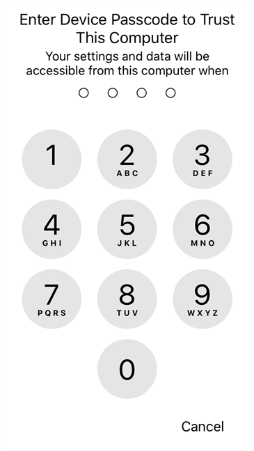 The iPhone asks for the PIN code