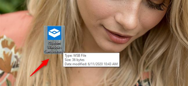 A custom Windows Sandbox config file