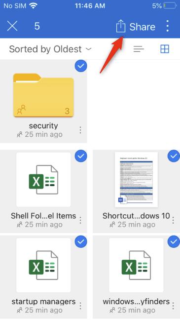 El botón Compartir de OneDrive para iOS