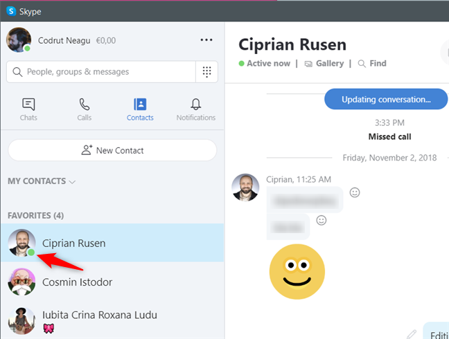 Online contacts are marked by Skype with a green icon