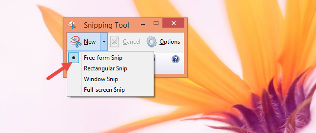 Snipping Tool, Windows