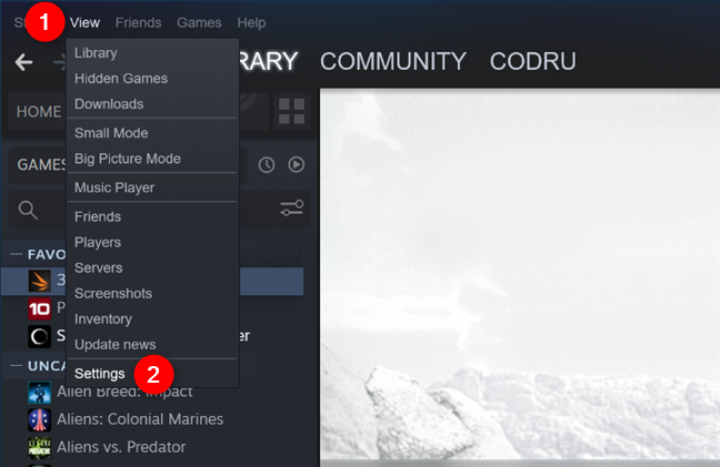 The Settings entry from Steam's View menu