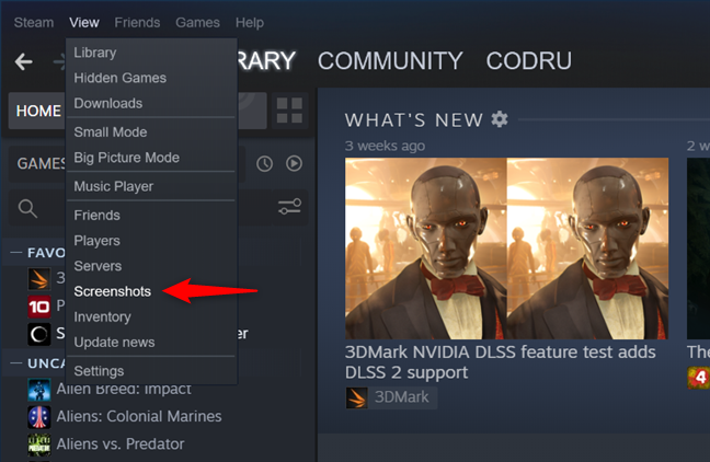 The Screenshots entry from Steam's View menu