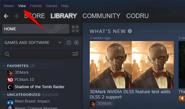 The View menu button from Steam