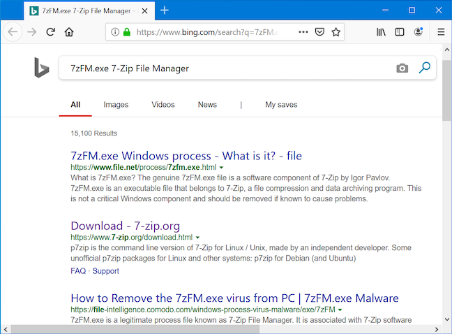 Your browser runs a Bing search with the name of the process