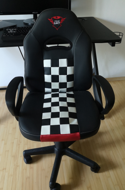 The Trust GXT 702 Ryon Junior gaming chair